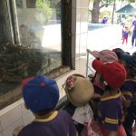 Educational Trip to the Yangon Zoo for Pre-Sch students (8 Mar 2018)