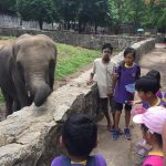 P1 – 5 Educational Trip to the Yangon Zoo (17 May 2018)